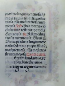 Book of Hours text