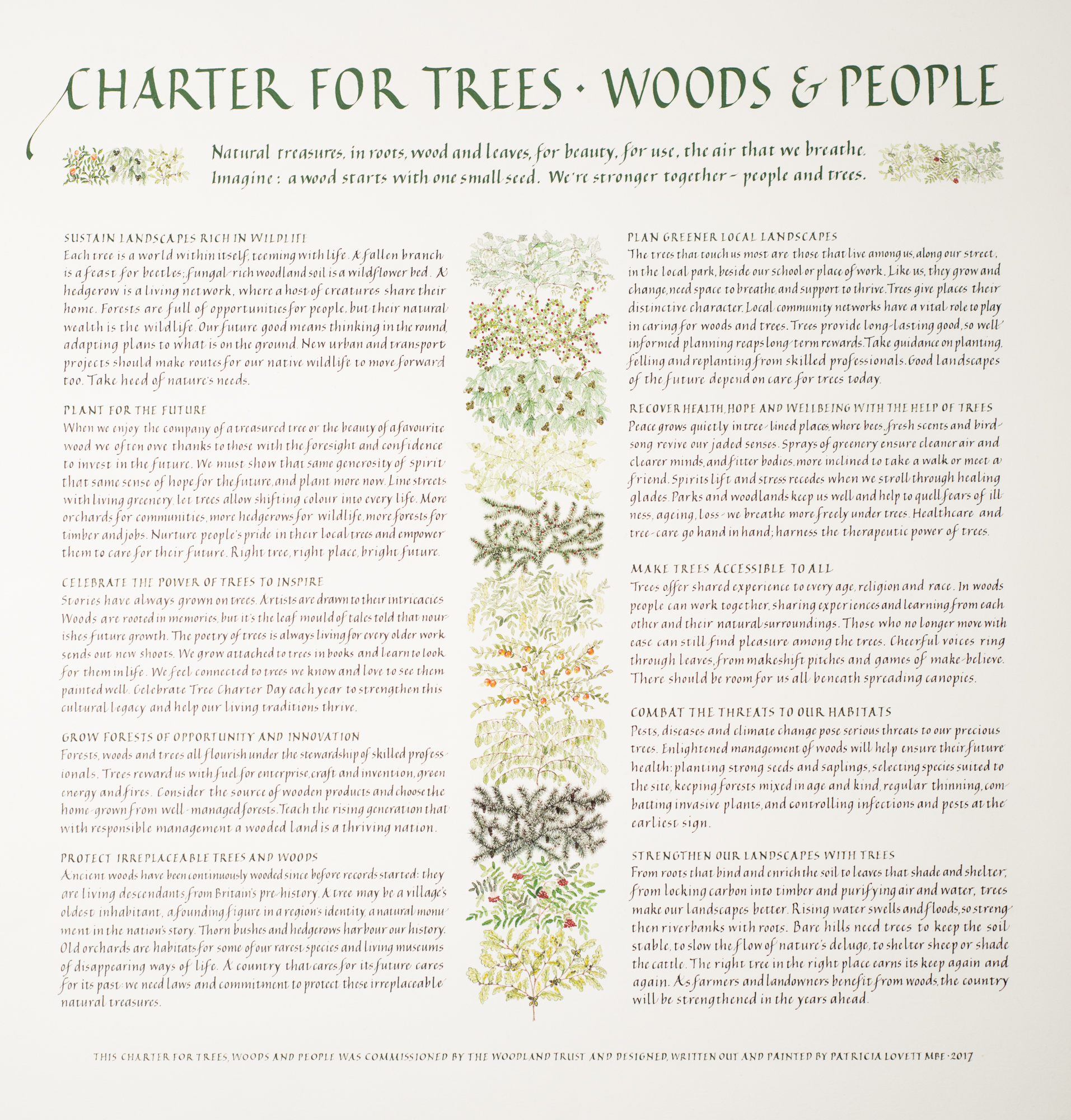 Charter for Trees, Woods and People | Patricia Lovett MBE